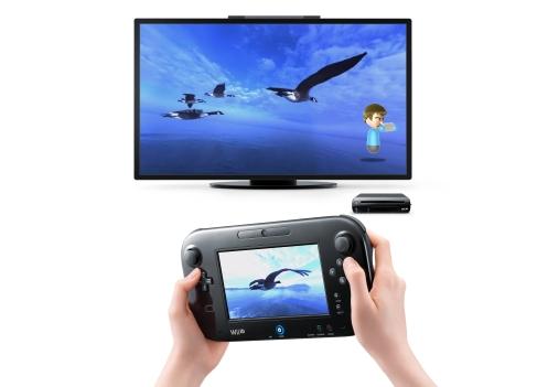 Wii-U-Panorama-View